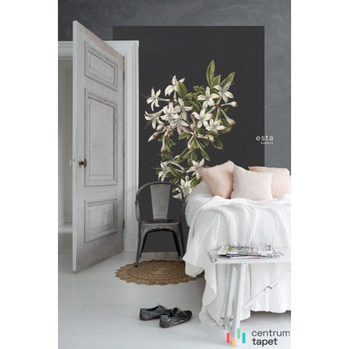 Fototapeta 158885 Blush Esta Home