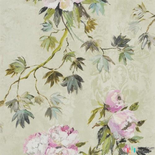 Tapeta PDG673/01 Flowers volume I Designers Guild