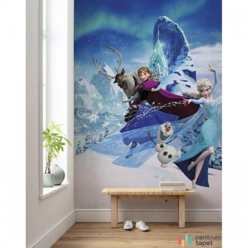 Fototapeta DX4-014 Frozen Elsas Magic