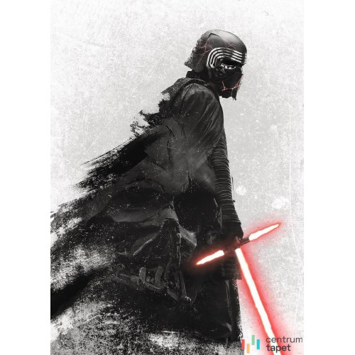 Fototapeta DX4-074 Star Wars Kylo Vader Shadow