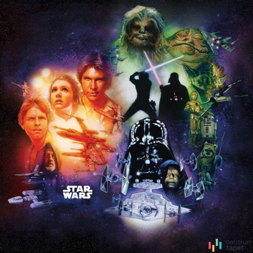 Fototapeta DX5-044 Star Wars Classic Poster Collage