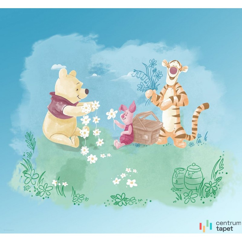 Fototapeta DX6-033 Winnie Pooh Picnic