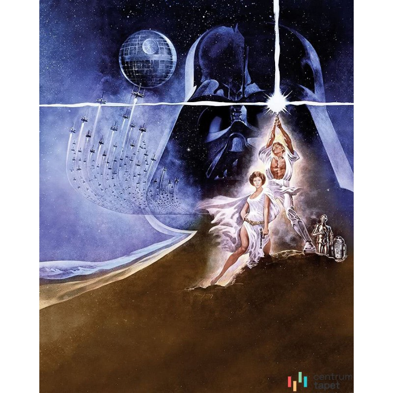 Fototapeta 008-DVD2 Star Wars Poster Classic 2