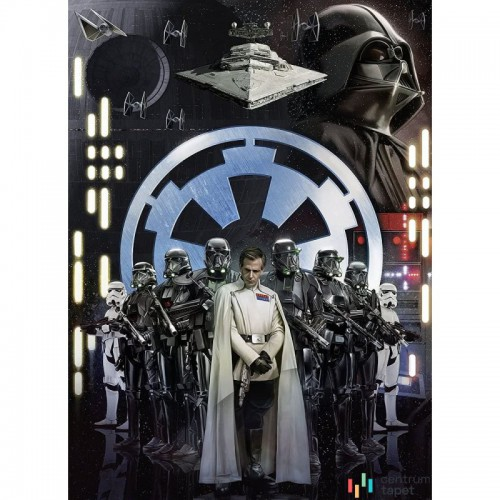 Fototapeta 009-DVD2 Star Wars Empire