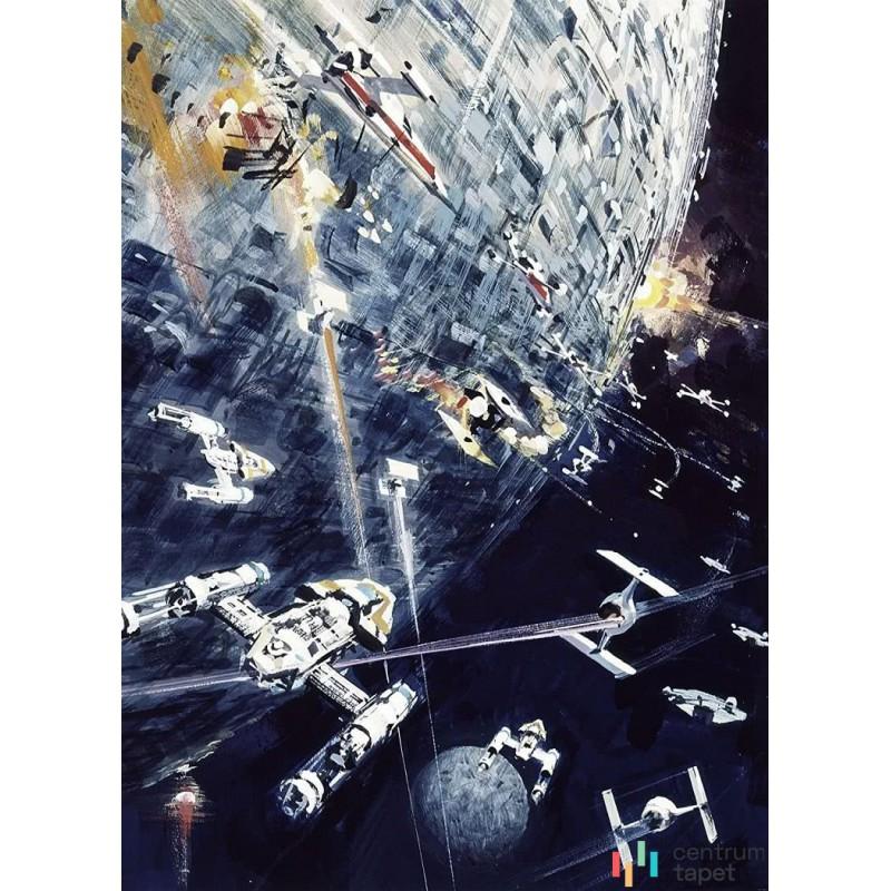 Fototapeta 012-DVD2 Star Wars Classic Dogfight