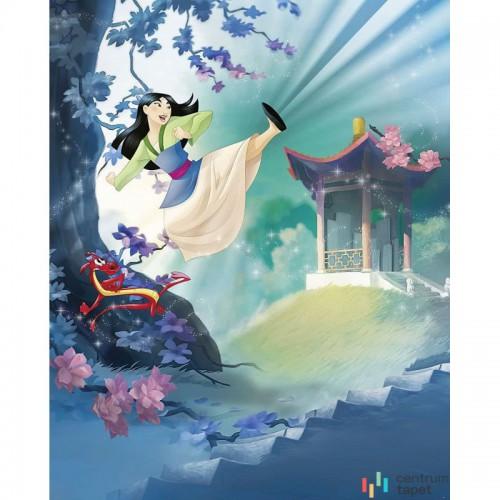 Fototapeta 020-DVD2 Mulan