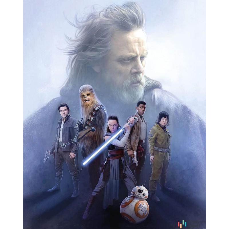 Fototapeta 031-DVD2 Star Wars Last Hope