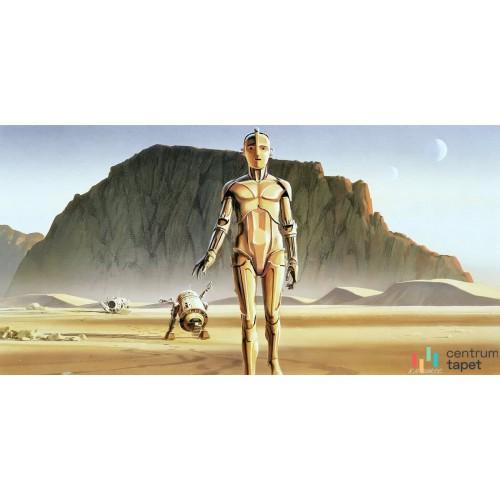 Fototapeta DX10-051 Star Wars Classic RMQ Droids
