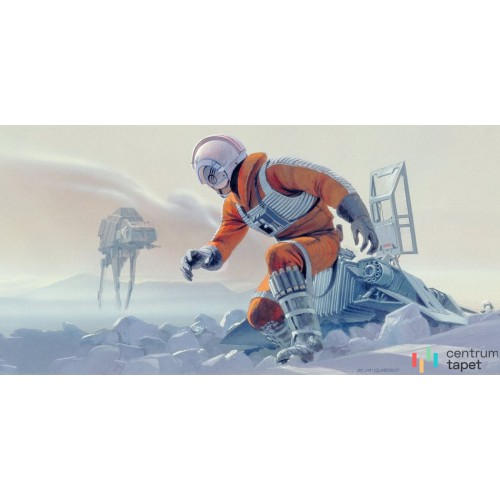 Fototapeta DX10-055 Star Wars Classic RMQ Hoth Battle Pilot
