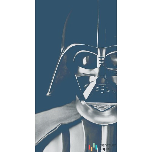 Fototapeta DX3-045 Star Wars Classic Icons Vader