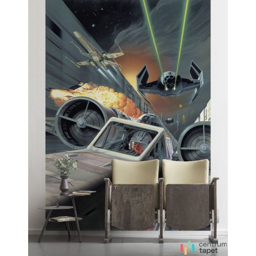 Fototapeta DX4-042 Star Wars Classic Death Star Trench Run