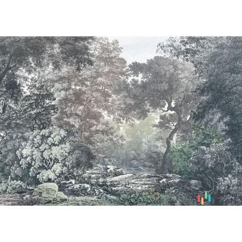 Fototapeta R4-060 Fairytale Forest
