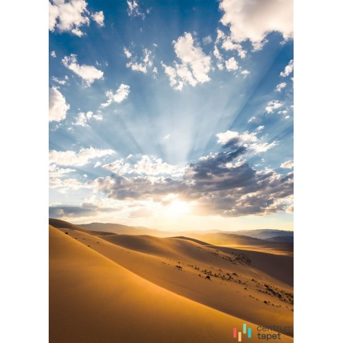 Fototapeta SHX4-100 Wüstenmagie