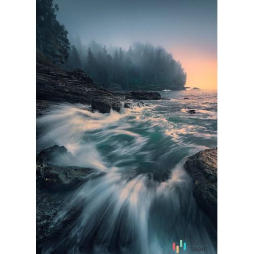 Fototapeta SHX4-129 Cry of the Sea