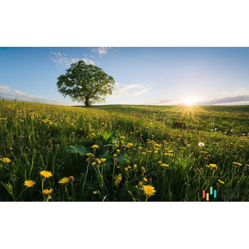 Fototapeta SHX9-034 Frühling auf dem Land