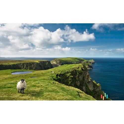 Fototapeta SHX9-040 Green Ireland