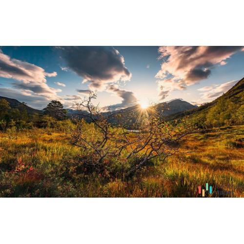 Fototapeta SHX9-060 Norwegische Herbstwelten