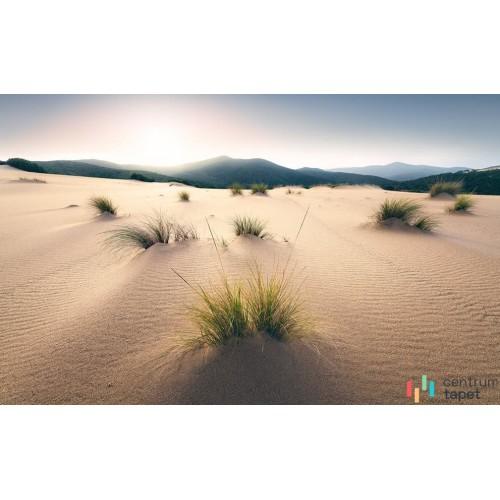 Fototapeta SHX9-091 Vivid Dunes