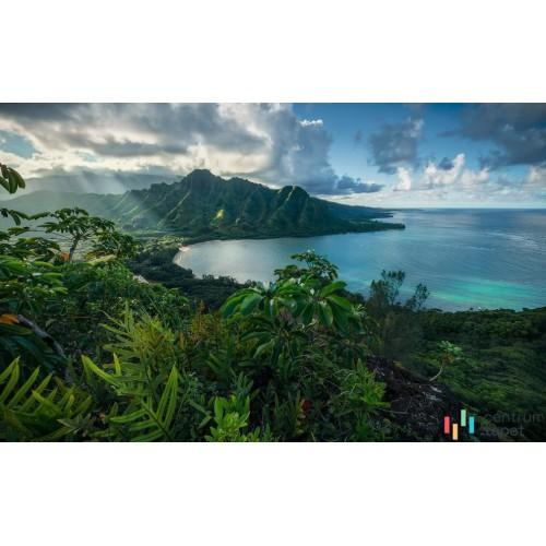Fototapeta SHX9-117 Jurassic Island