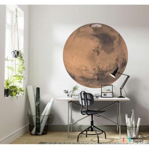 Fototapeta D1-018 Mars