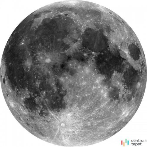 Fototapeta D1-019 Moon
