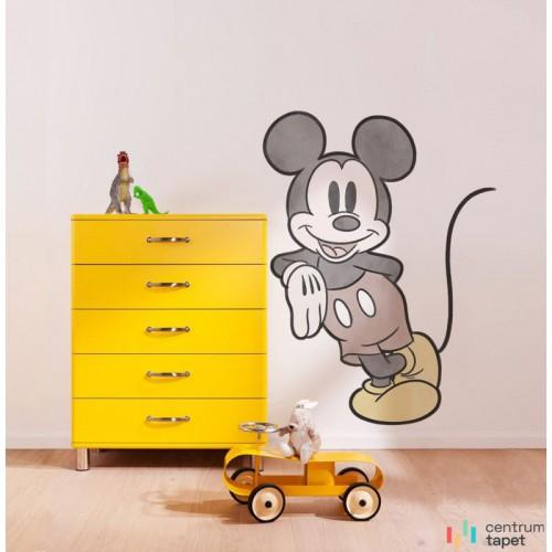 Fototapeta 12425 Mickey Essential