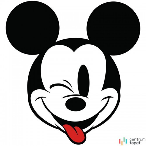 Fototapeta DD1-057 Mickey Head Optimism