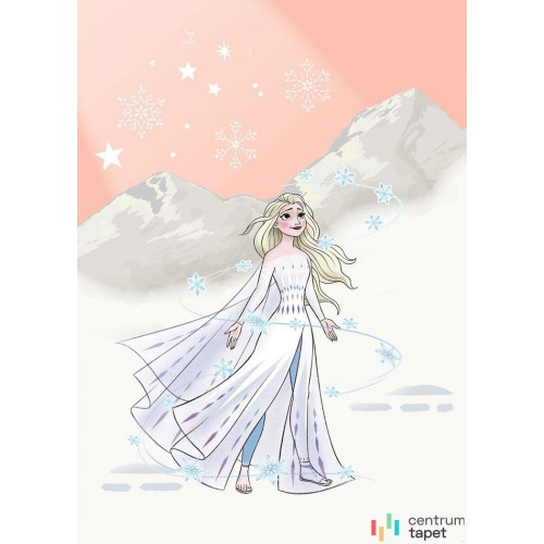 Fototapeta IADX4-041 Frozen Winter Magic