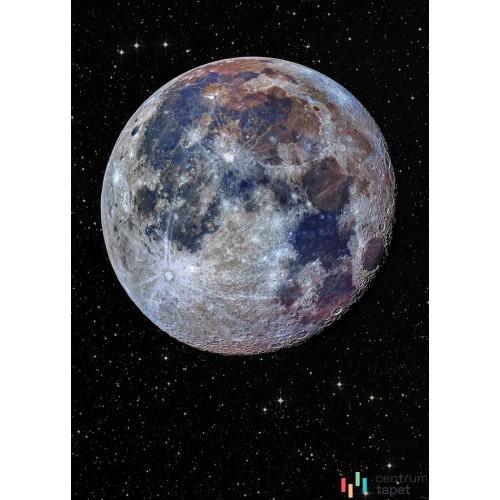Fototapeta IANGX4-025 Lunar