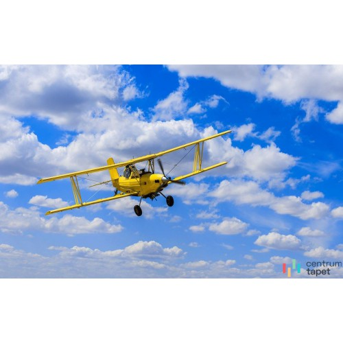 Fototapeta IANGX8-018 Biplane