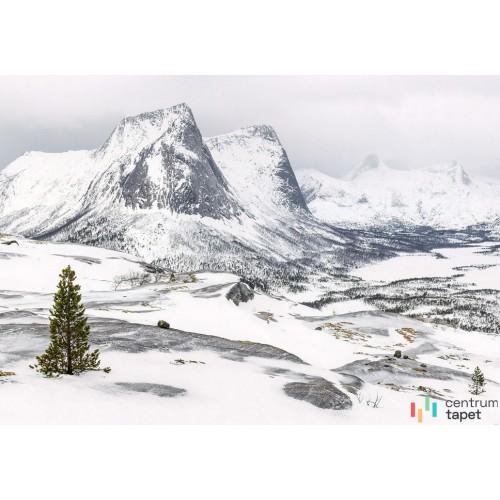 Fototapeta IANGX8-024 White Enchanted Mountains