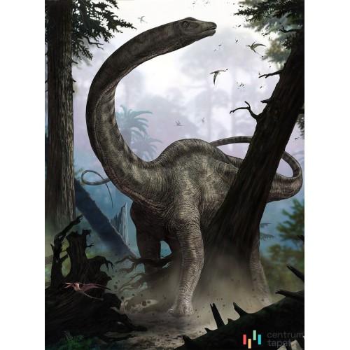 Fototapeta XXL2-531 Rebbachisaurus