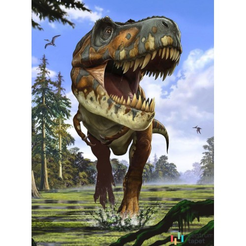 Fototapeta XXL2-532 Tyrannosaurus Rex