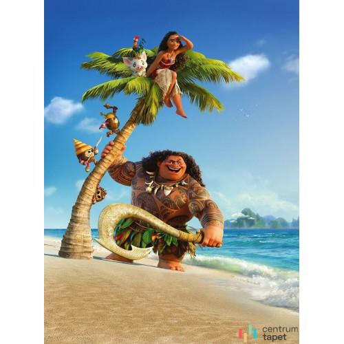Fototapeta XXL2-801 Moana and Maui
